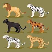 Set felines. Vector Illustration