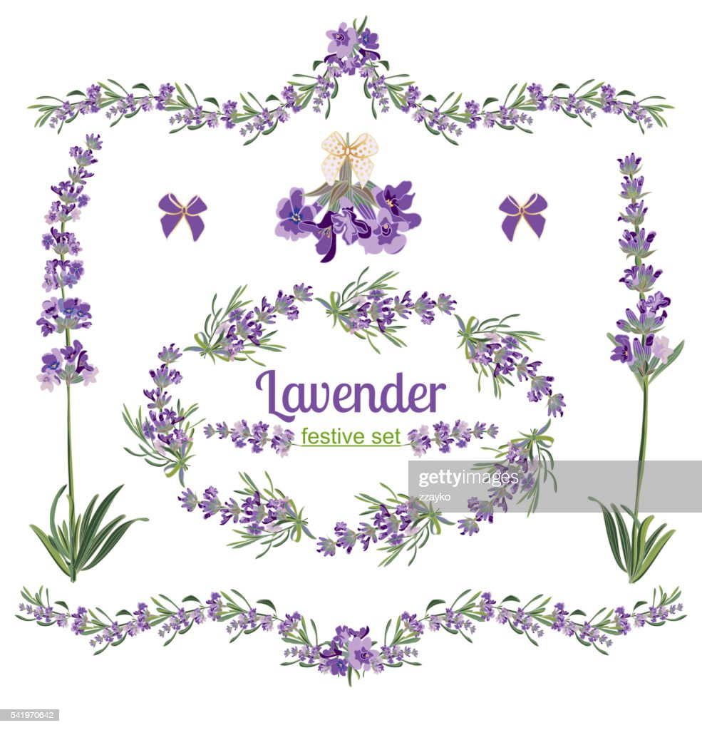 Set festive frames and elements with Lavender flowers
