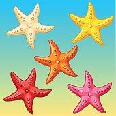 Set five color starfish on yellow-blue