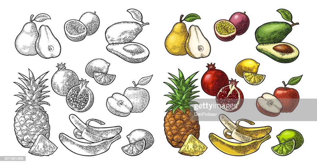 Set fruits. Pineapple, lime, banana, pomegranate, maracuya, avocado.
