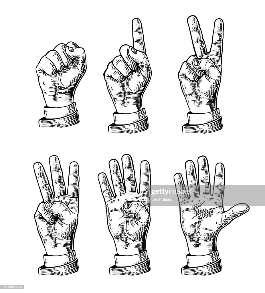 Set gestures of hands counting from zero to five