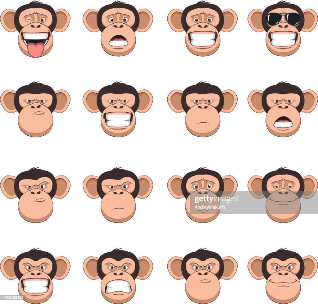 Set head monkey