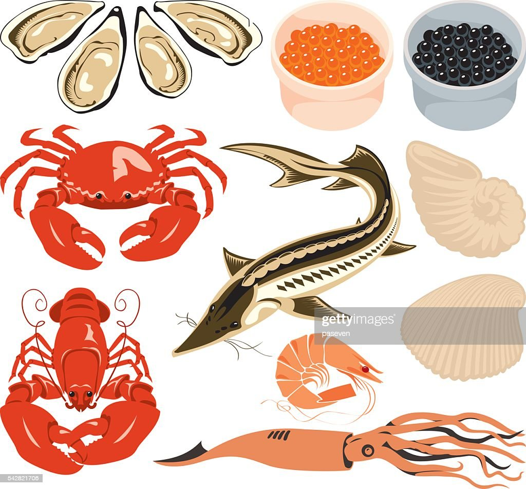set marine animals
