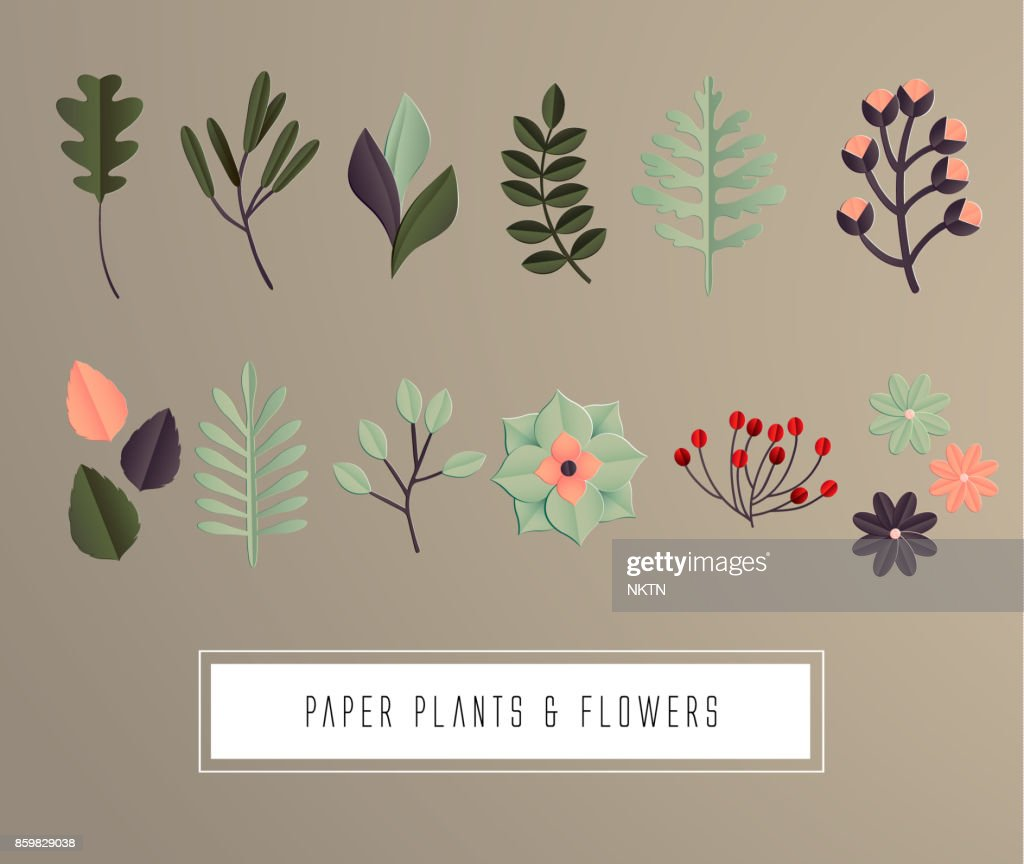 Set natural branches leaves. Vector decorative cute illustration for design