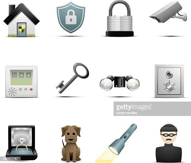 Set of 12 home security icons on white