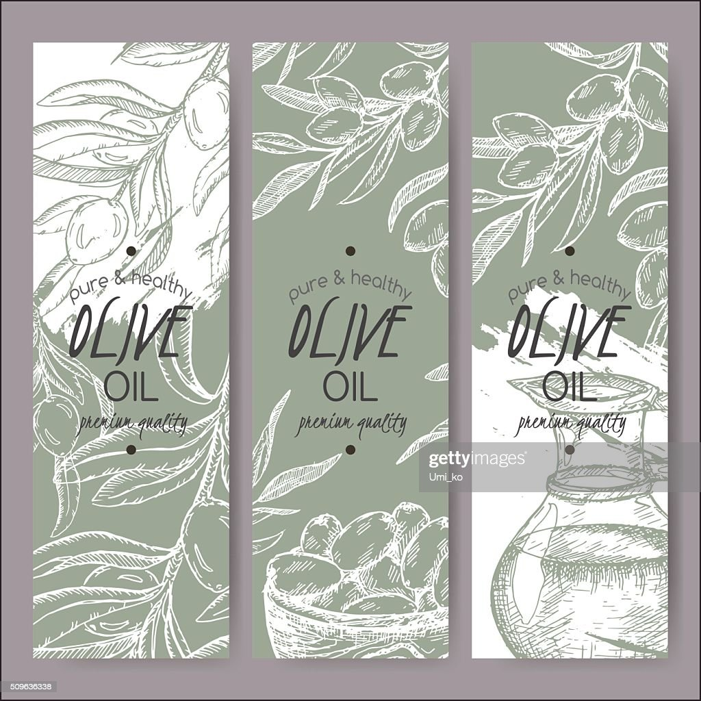 Set of 3 vector olive oil label templates.