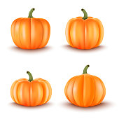 Set of 4 Realistic Pumpkins.Halloween decoration.Vector illustration