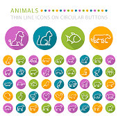 Set of 50 Elegant Universal White Minimalistic Thin Line Animals Icons on Circular Colored Buttons on White Background