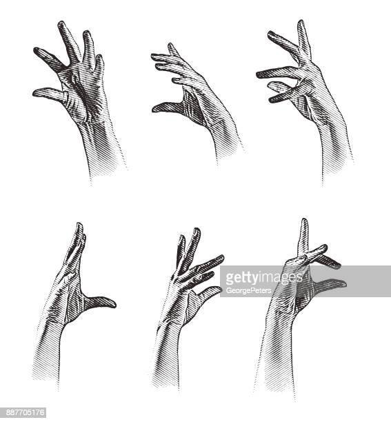 set of 6 engraved hand gestures. grouped separately. - human joint stock illustrations