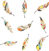 set of 9 colorful feathers on a white background