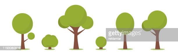 illustrazioni stock, clip art, cartoni animati e icone di tendenza di insieme di alberi stilizzati astratti. illustrazione naturale, cespuglio di cartoni animati e set di alberi. - albero