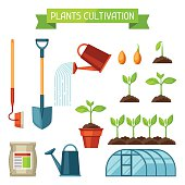 Set of agriculture objects. Instruments for cultivation, plants seedling process