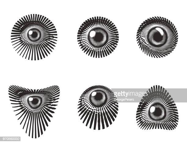 set of all seeing eyes - woodcut stock illustrations