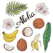 Set of aloha objects - coconut, banana, flowers and leaves.