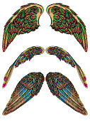 Set of angel or bird colourful wings. Colorful abstract hand drawing sketch, isolated illustration. Woodcut vintage style wings, hipster tattoo or vintage body art concept. Vector.