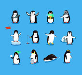 Set of Animal Pinguin Design Flat