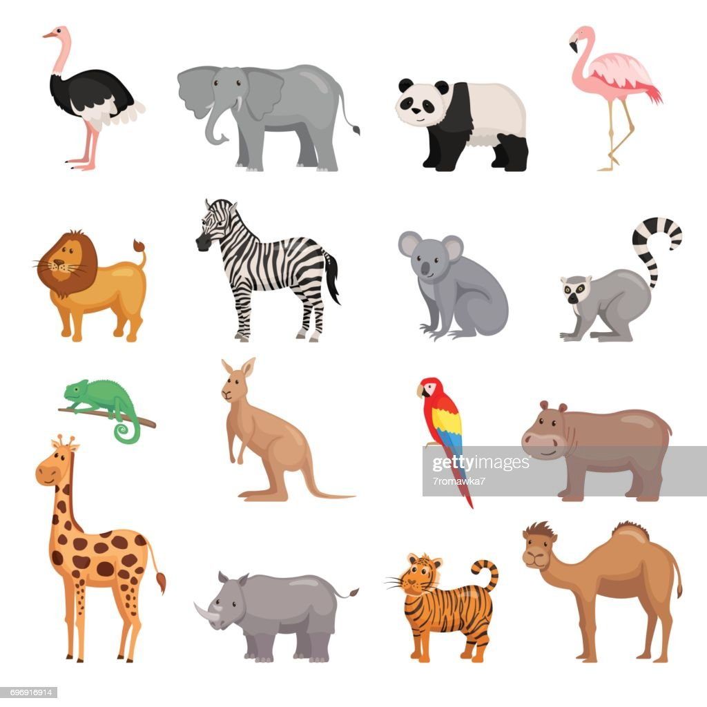 Set of animals of zoo