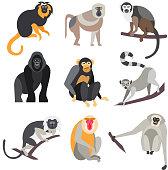 Set of Apes and Monkeys. Vector Illustration