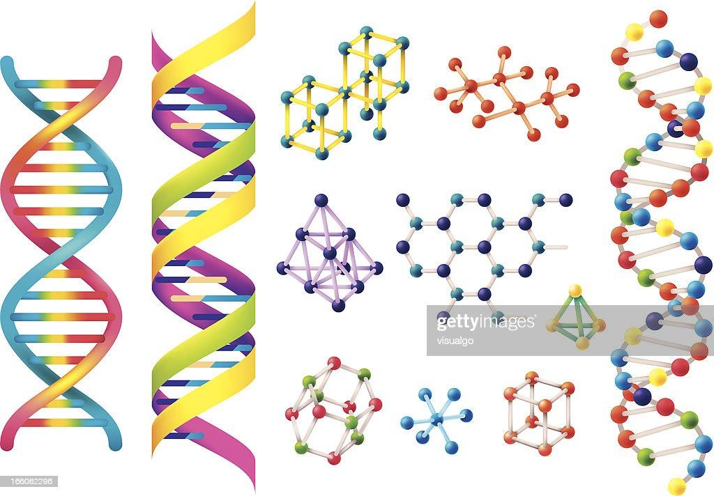 Set of assorted colorful DNA models