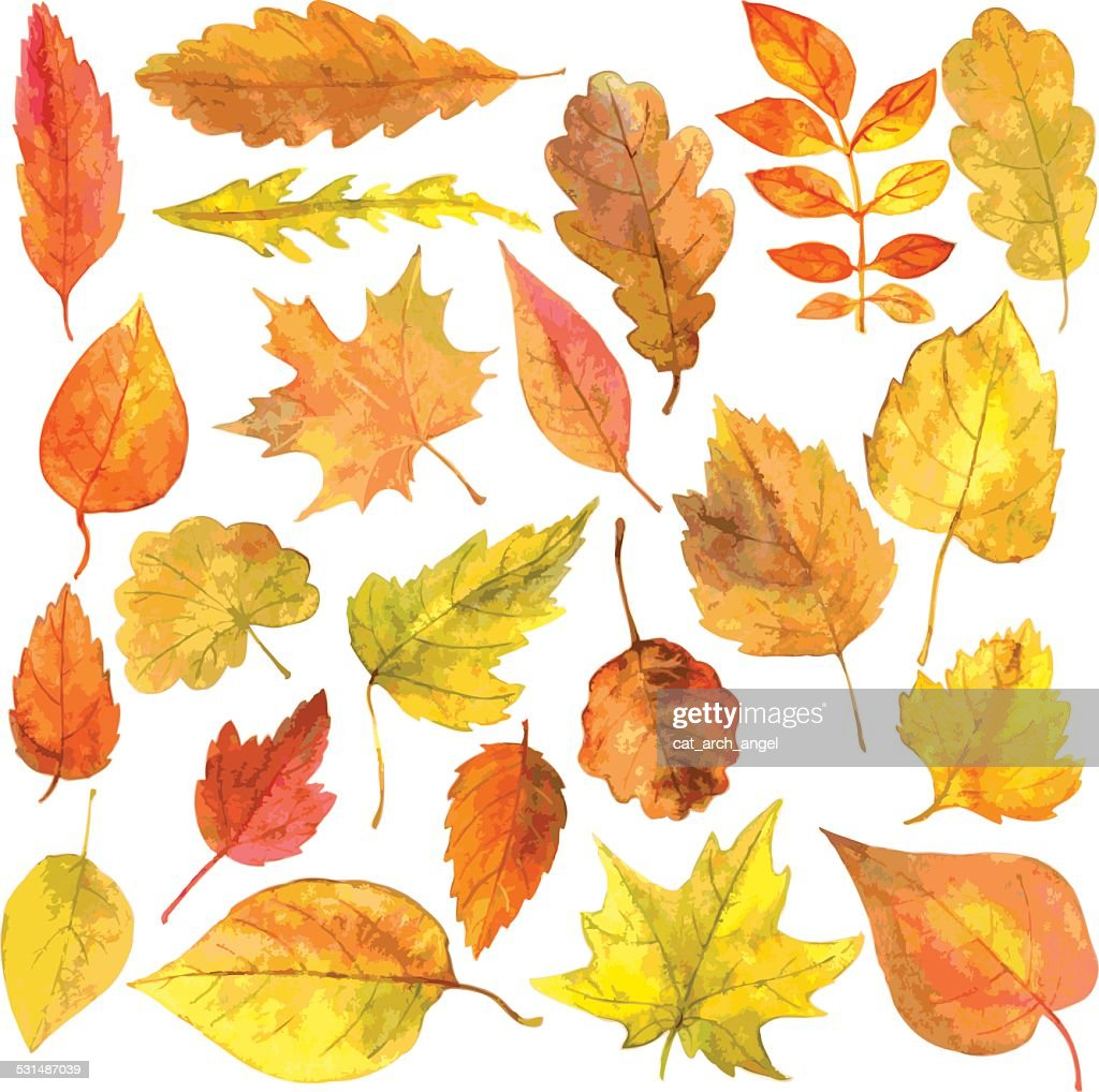 set of autumn leaves in watercolor