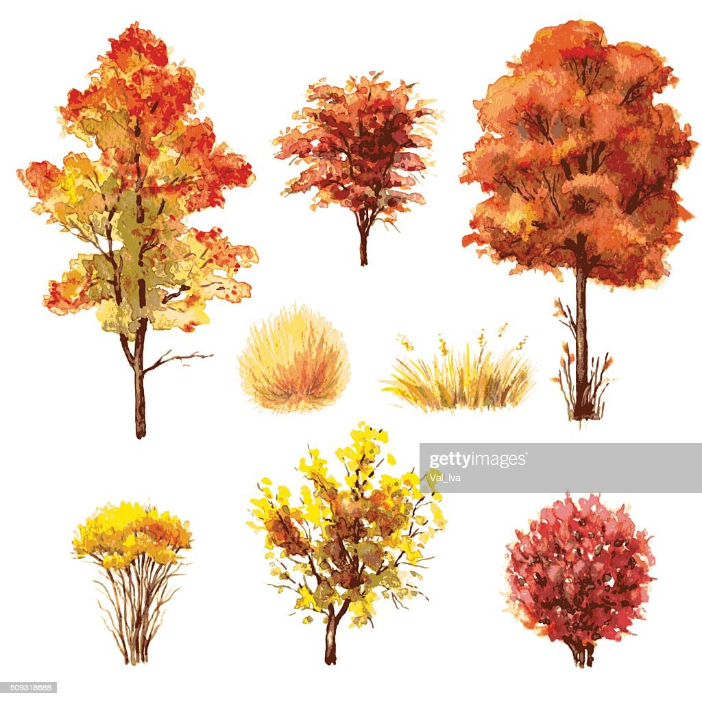 Set of autumn trees and bushes.
