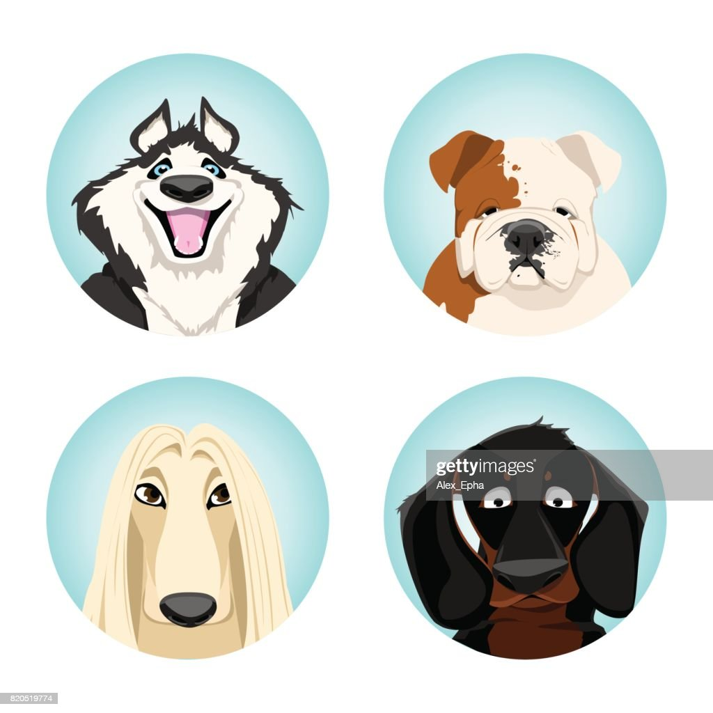set of avatars dogs. pedigree dogs. vector illustration