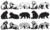 Set of bear on a white background