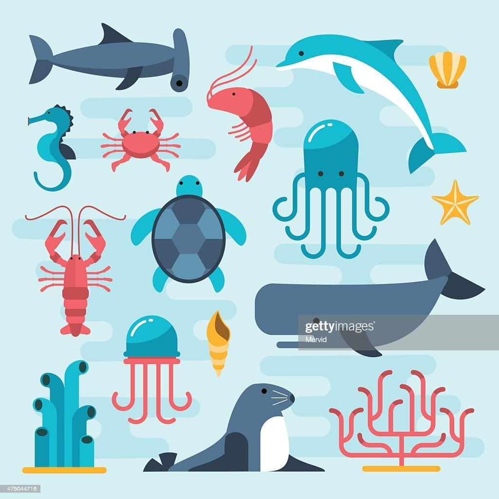 set of beautiful flat sea life