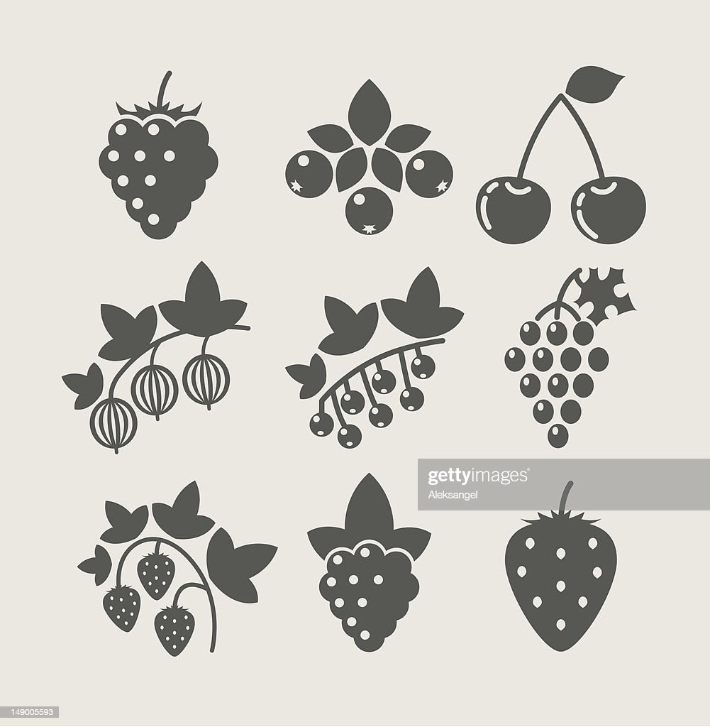 set of berry food icon