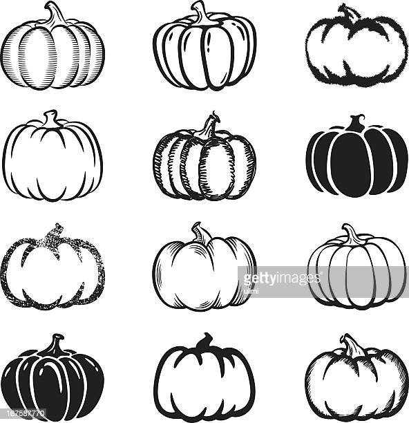 bildbanksillustrationer, clip art samt tecknat material och ikoner med set of black and white pumpkin icons on white background - pumpa