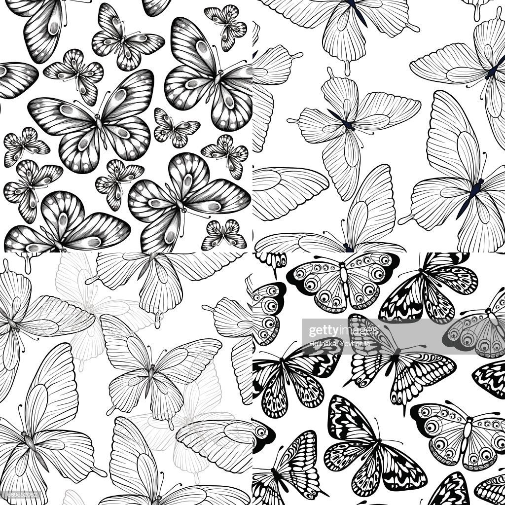set of black and white seamless background with butterflies.