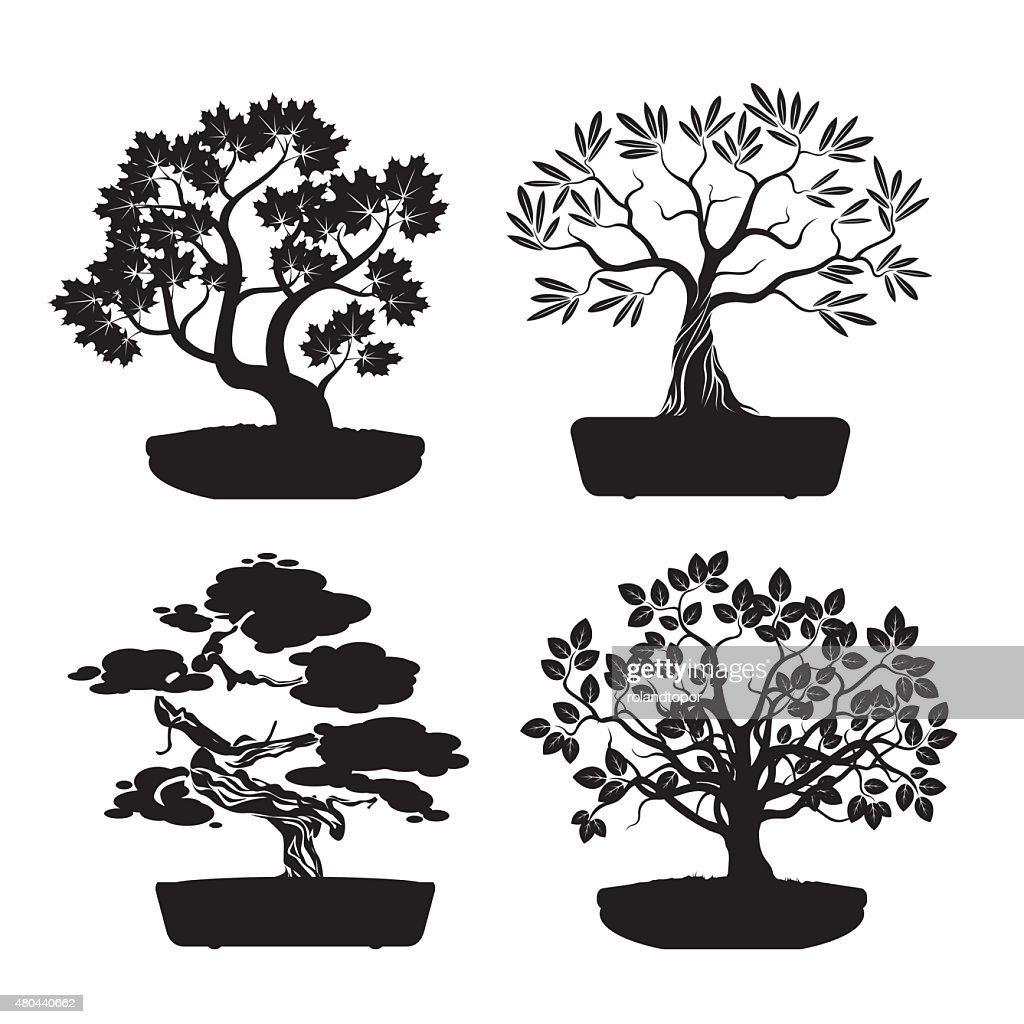 Set of Black Bonsai Trees.