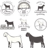Set of boer goat labels, badges and design elements