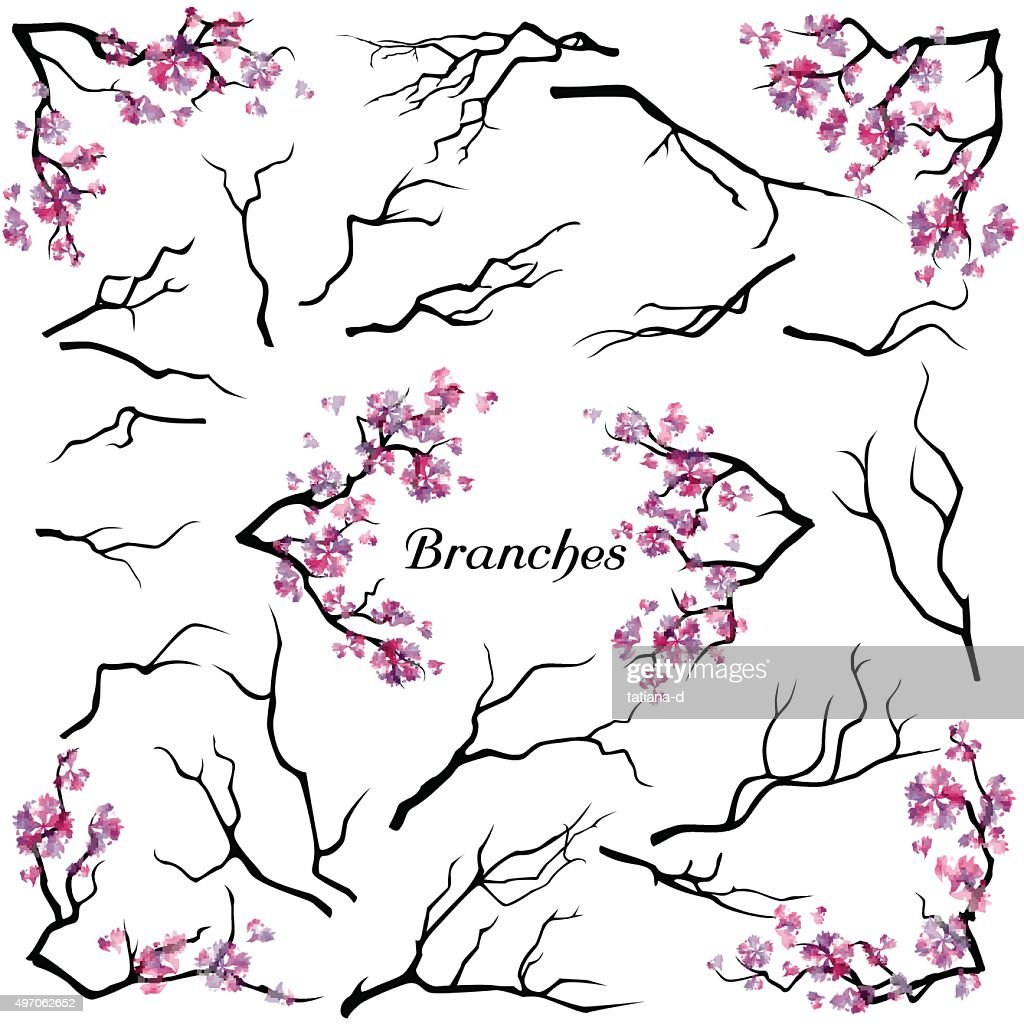Set of branches isolated on white background