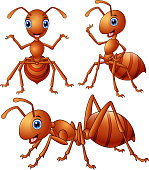 Set of brown ants cartoon