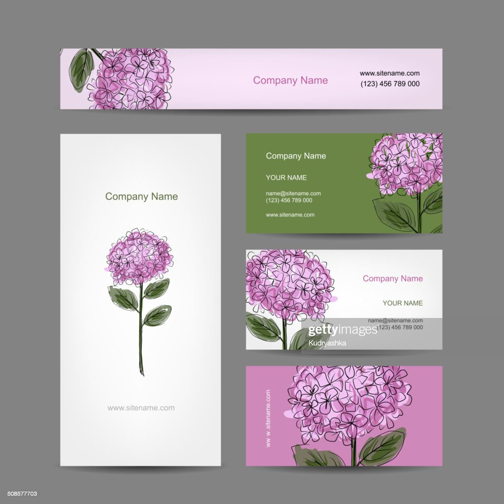 Set of business cards design with hydrangea flower : Vector Art