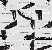 Set of business cards with a bird feather