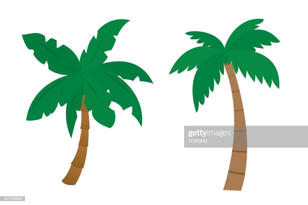 free palm tree animation images pictures and royalty free stock rh freeimages com cartoon palm tree images cartoon palm tree transparent