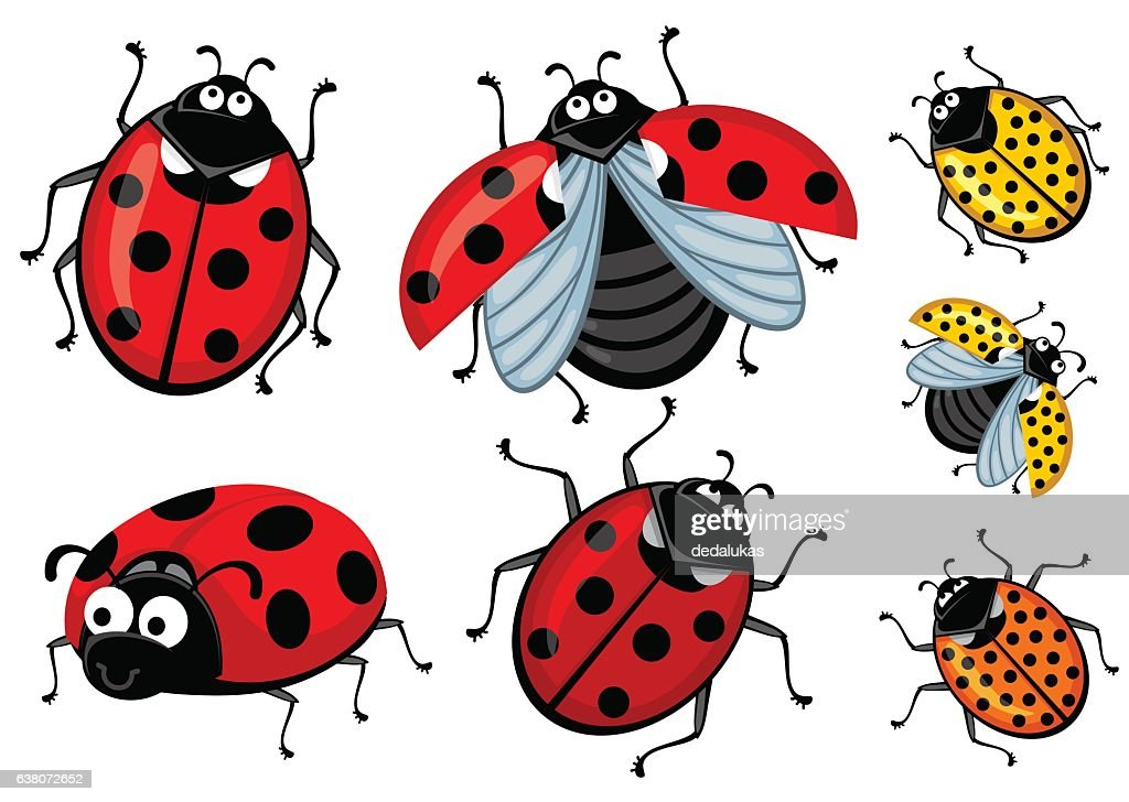 Set of cartoon red and ladybirds on a white background