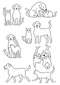 set of cat and dog pairs