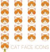 Set of cat faces