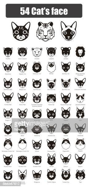 set of cat flat icons, vector illustration