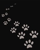 A set of cat or dog footprint on a black background