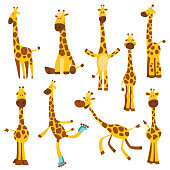 Set of Cheerful funny giraffes with long neck. Height meter or meter wall or wall sticker from 0 to 150 centimeters to measure growth. Childrens vector illustration
