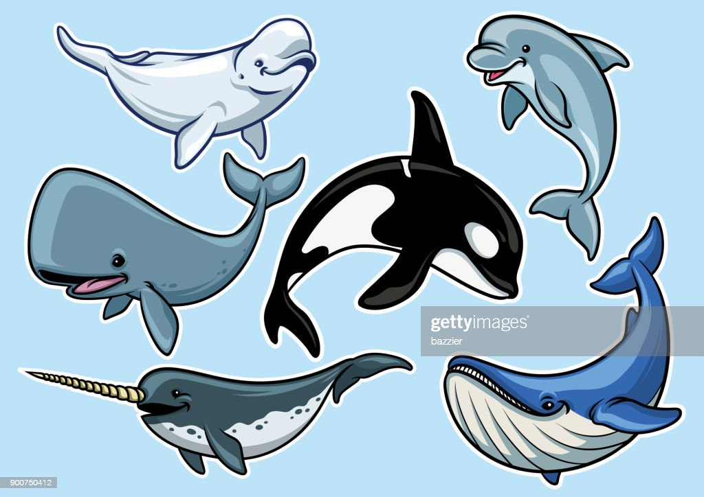 set of cheerful various of whales