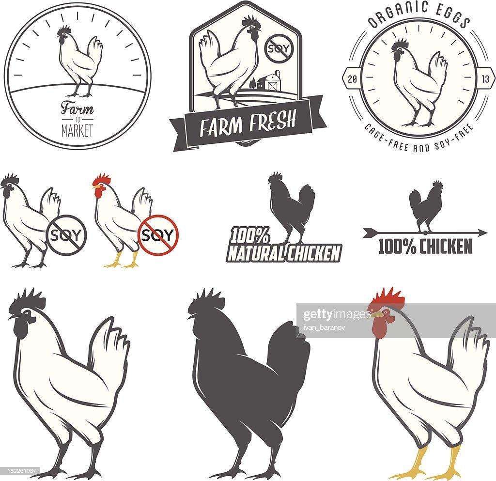 Set of chicken meat packaging labels design