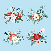 Set of Christmas bouquets made of fir, pine and eucalyptus tree branches, poinsettia, mums, magnolia flowers, holly, leaves and berries. Floral winter decoration. Isolated vector objects