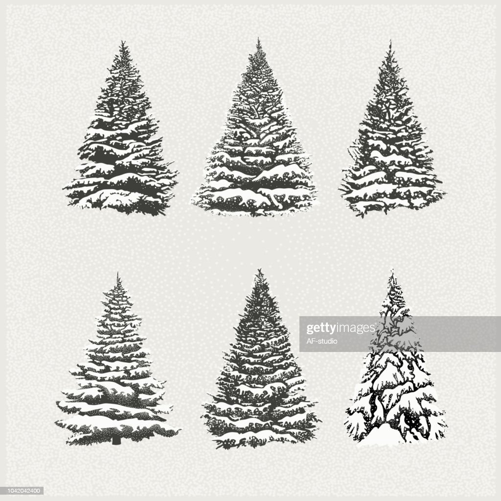 Set of Christmas Trees : stock vector