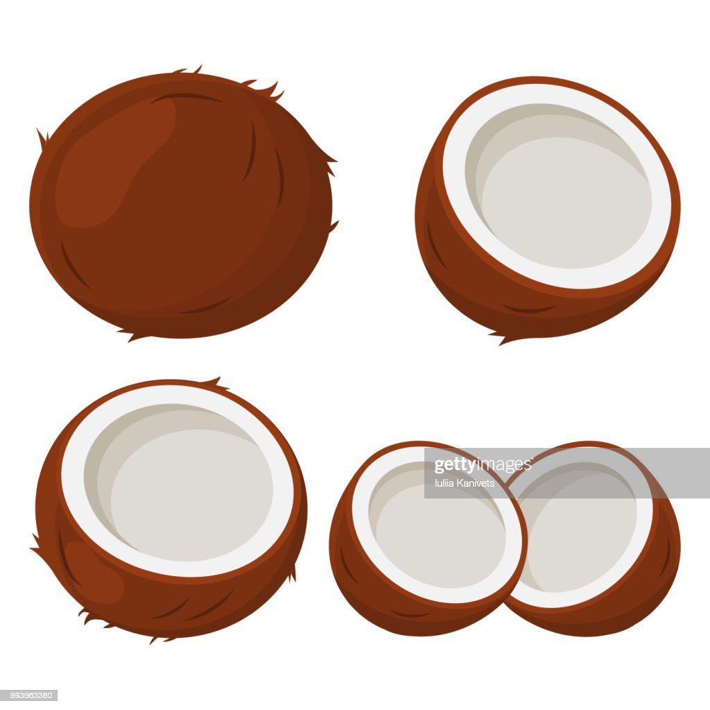 Set of coconut. Vector illustration