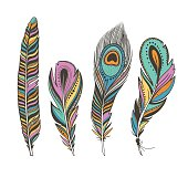 set of colorful bird feathers with ethnic ornaments